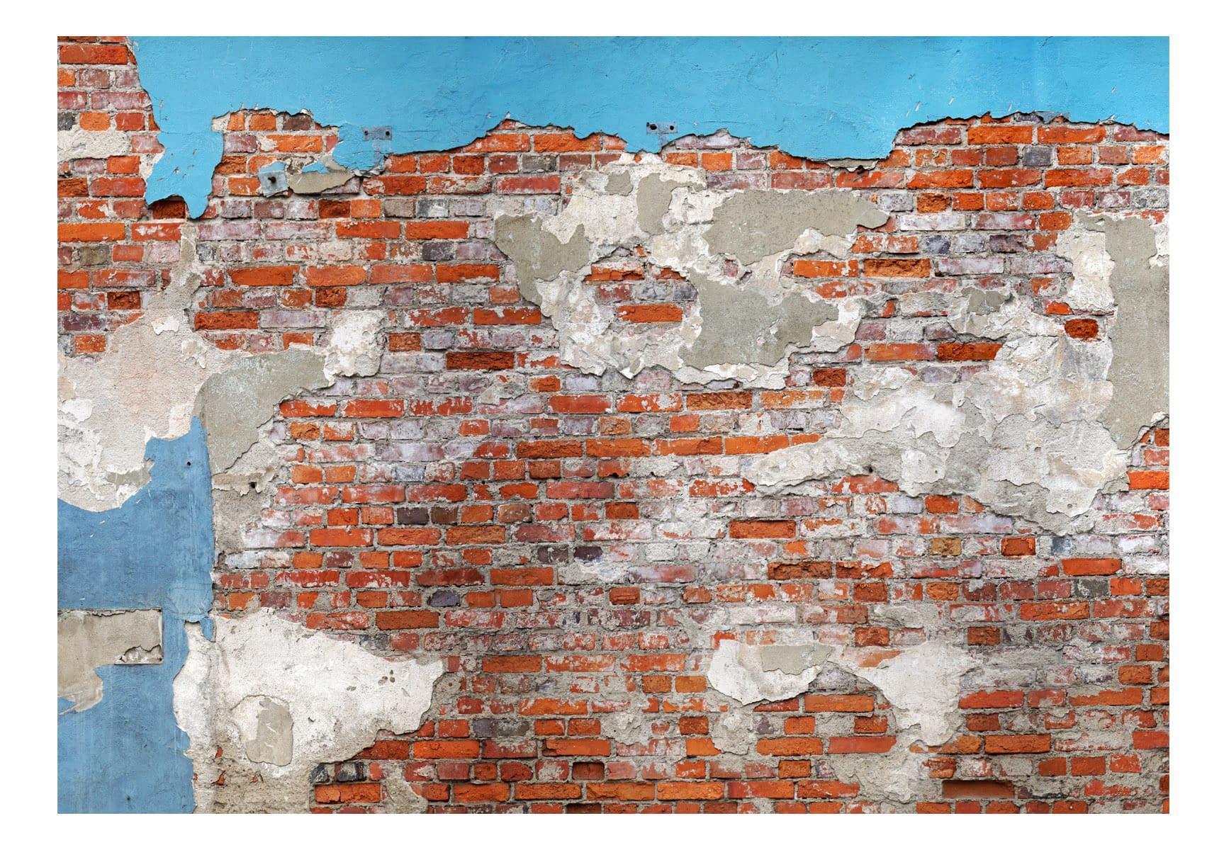 Fototapeta samoprzylepna – Tajemnice muru