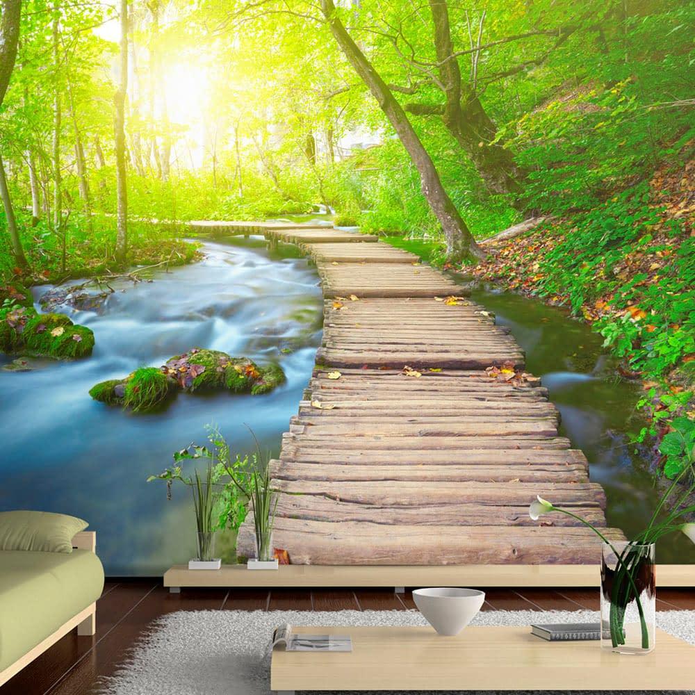 Fototapeta samoprzylepna – Zielony las