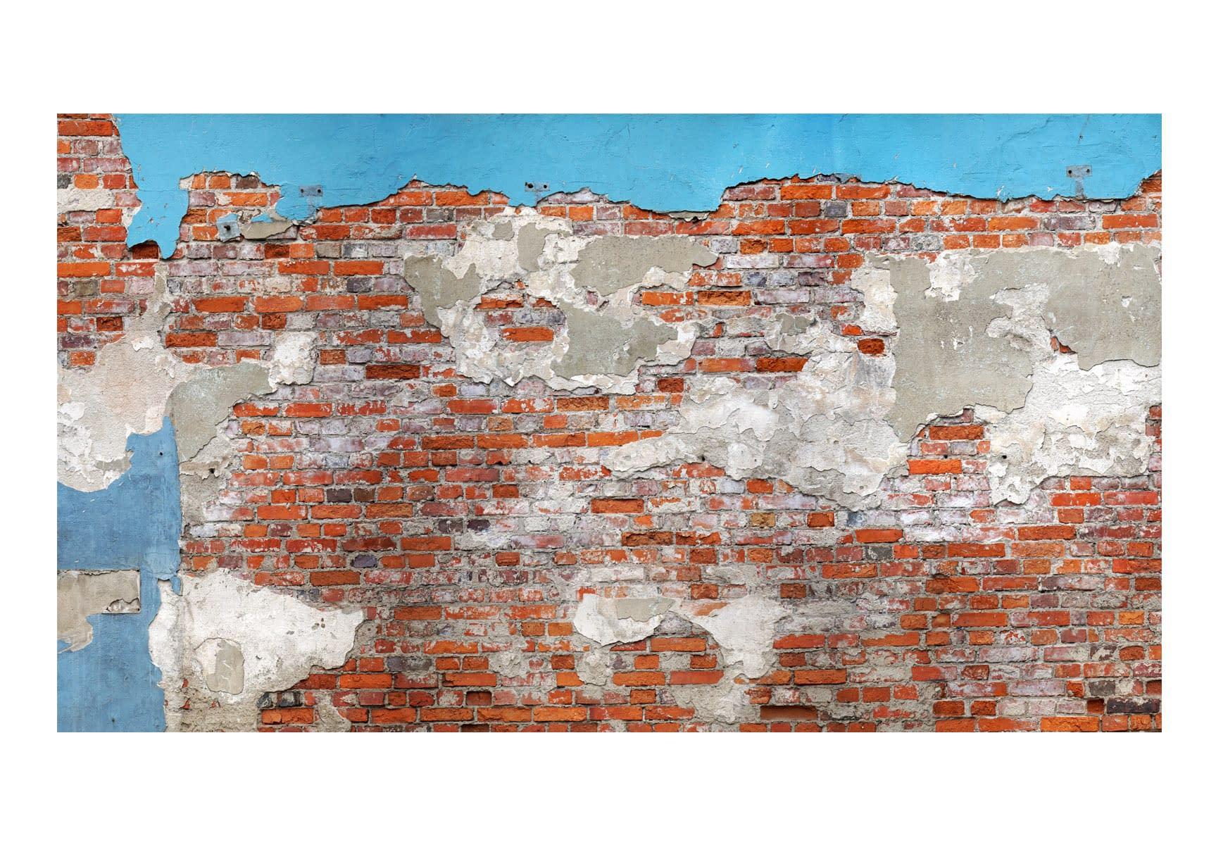 Fototapeta samoprzylepna – Tajemnice muru II